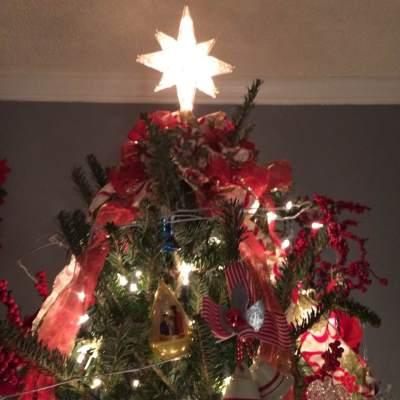 ornament-in-tree