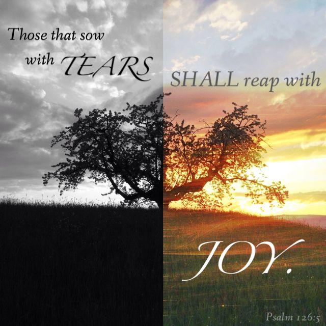 b980c334a29d7c3b9e88e85e021a3379--jesus-quotes-bible-quotes
